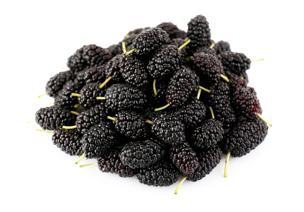 11 Amazing Health Benefits of Mulberries