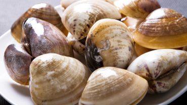 9 Amazing Health Benefits of Clams