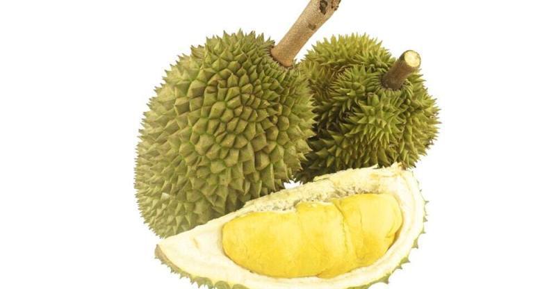 9 Amazing Benefits of Durian Fruit