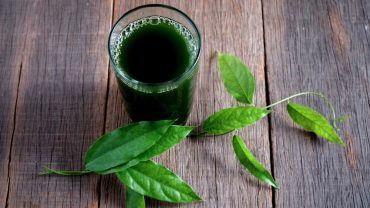 13 Amazing Benefits of Chlorophyll