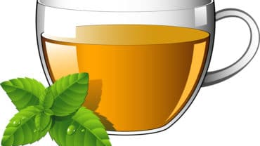 11 Amazing Benefits Of Spearmint Tea